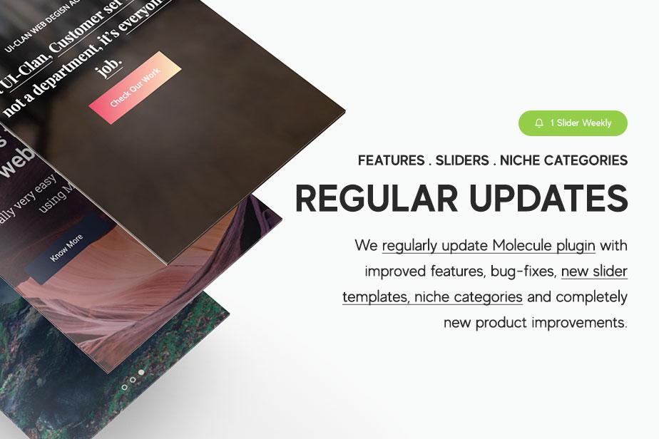 reason-updates